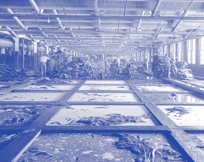 A photograph of a factory with tanning baths covering the floor of the space in a grid formation. In