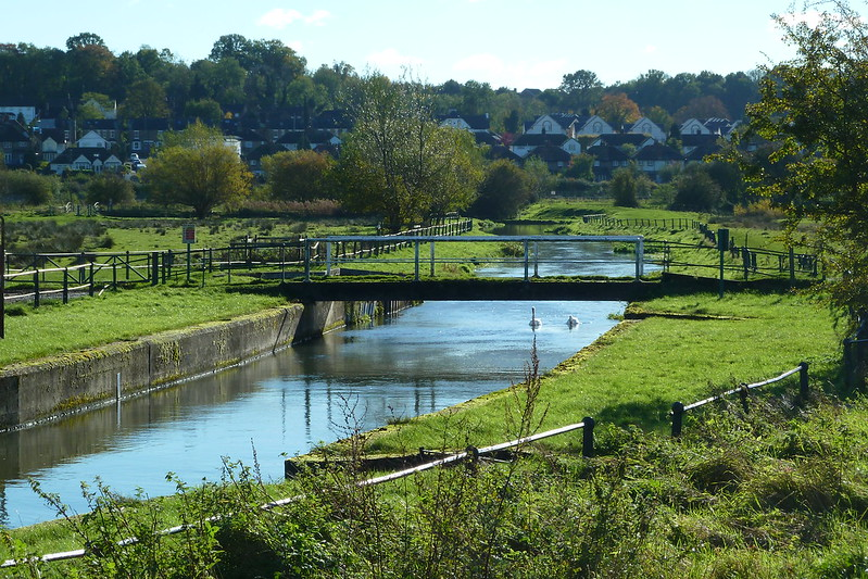 A photograph of a man-made canal/river flanked by grassy green meadow. Homes can be seen in the distance. A footbridge crosses over the river and two white swans are swimming in the water about to go under the bridge.
