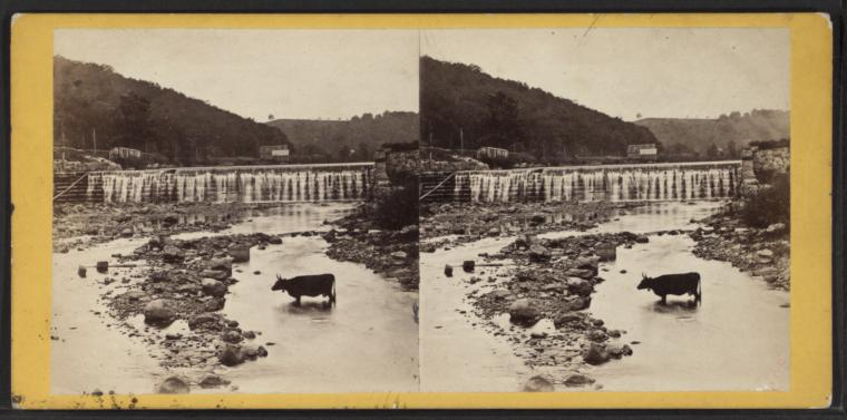 A stereographic image (two squares with the same photo placed-side-by-side intended to be viewed through a special viewer for a 3Dimensional effect) of a black and white landscape with a mountain in the background and a shallow river in the foreground. A cow is crossing the river.