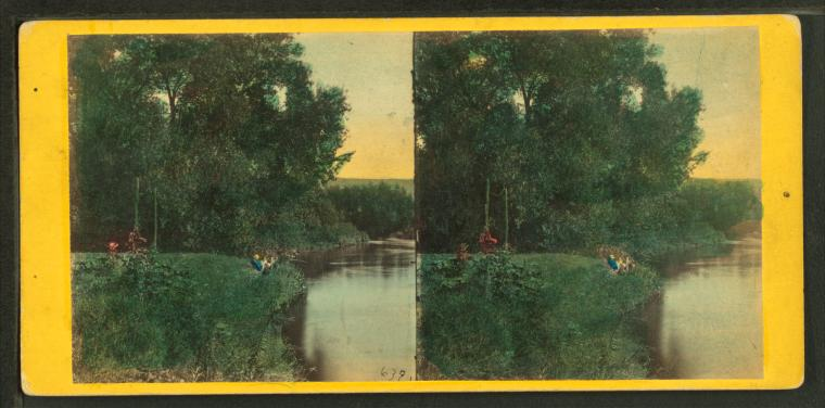 A stereoscopic illustration of a river edge surrounded by trees and grasses. The image is a black and white photo that has been hand colored with vibrant paints.
