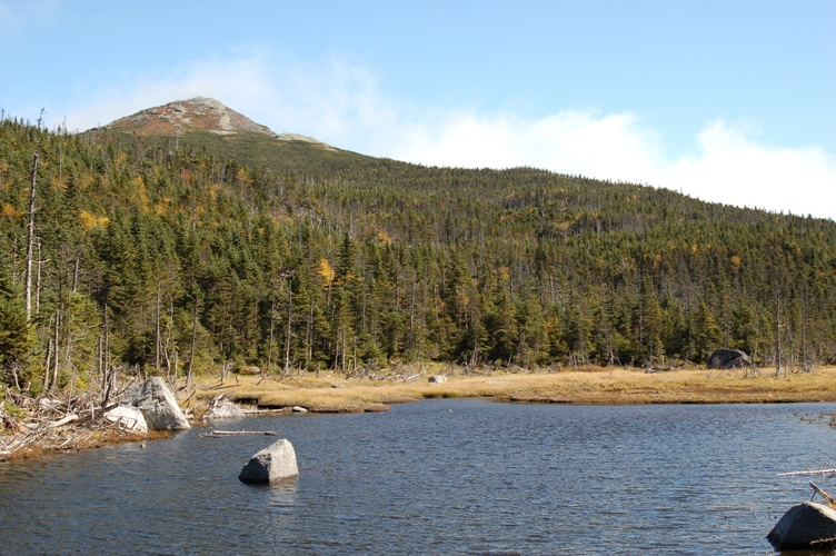 A color photograph of a large mountain in the background and a lake in the foreground. There is thick forestland between with many mature evergreen trees.
