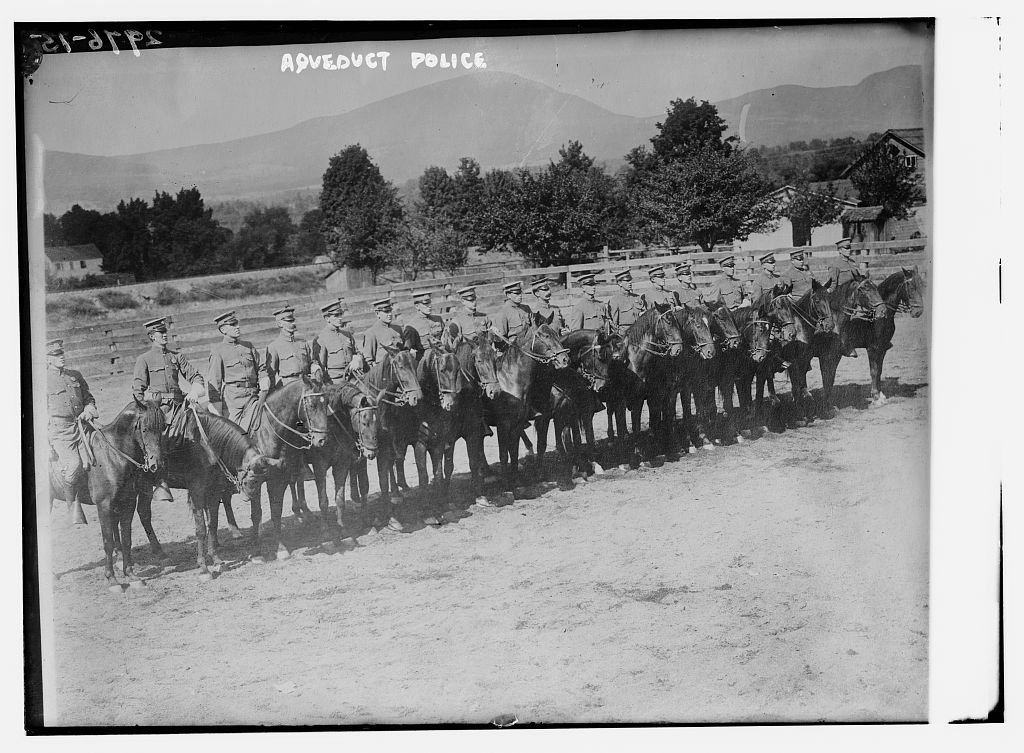 A black and white photo of seventeen policemen mounted onto brown horses all lined up neatly. The policemen are stiff-backed and wearing hats. In the background stands the Catskill Mountains.