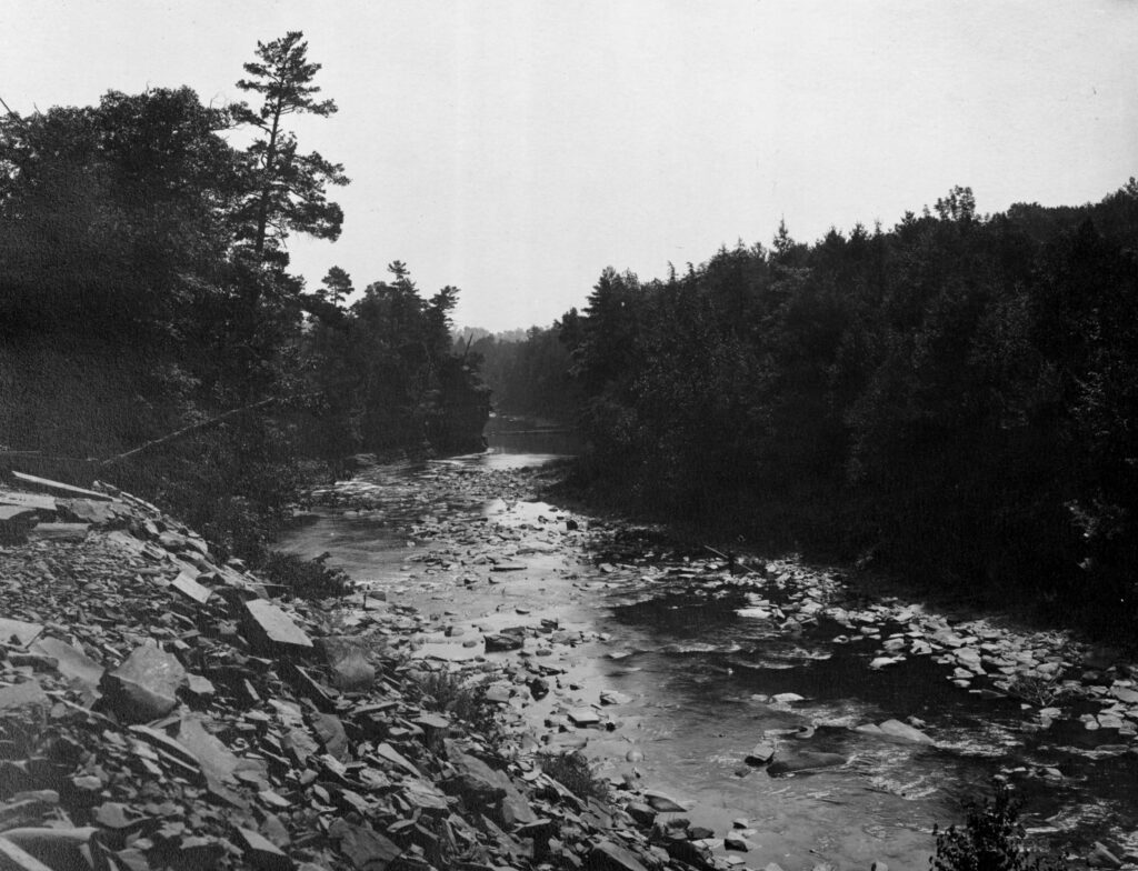 A black and white photo of a picturesque rocky creek cutting through a forest of evergreen trees.
