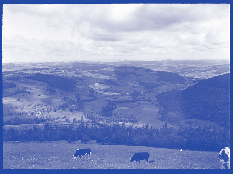 A blue tinted monochrome photo looking down from a high hill at a pastoral landscape. There are a couple of cows grazing in the foreground and the smaller hills below are a patchwork of farmland.