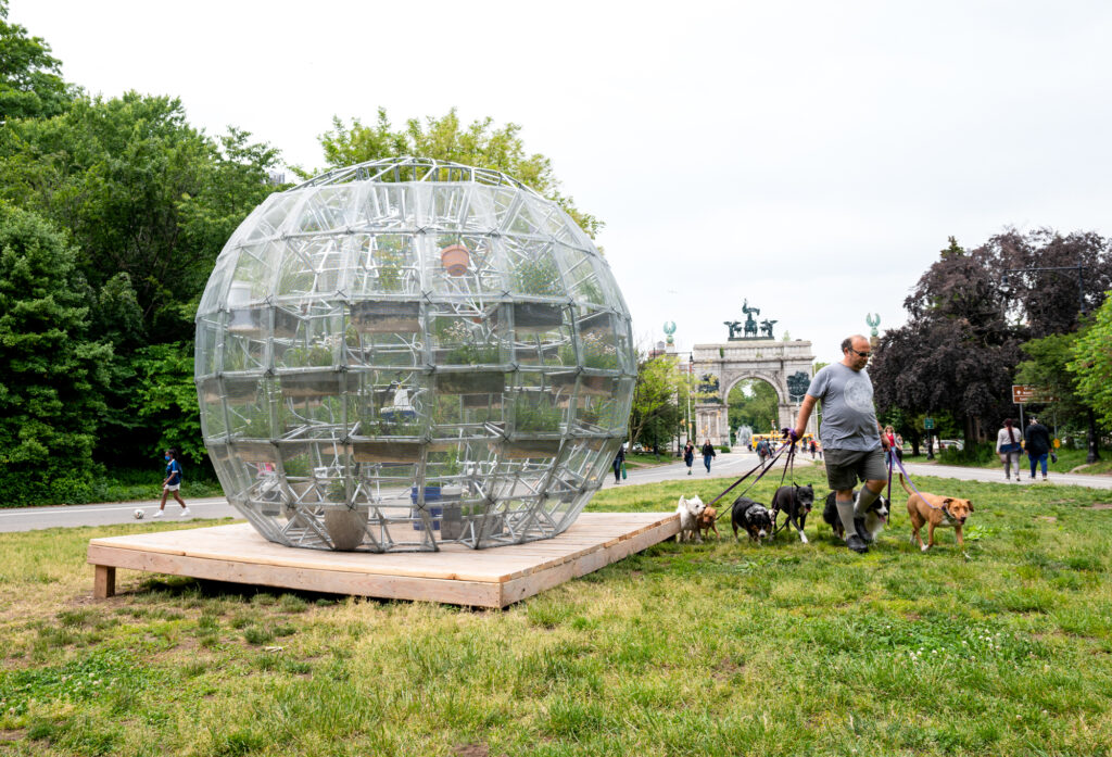 A geodesic sphere sculpture stands in a green patch of grass at the entrance to Prospect Park, with the grand stone gates of Grand Army Plaza in the background. The sphere is sitting on a wood platform and one man walks past it walking a pack of dogs of all sizes on leashes. The sculpture looms at least a few feet above his head. The sculpture is a large sphere made of metal bars covered in a steel mesh skin. Inside there are clear tubs attached to the walls and skeleton of the sphere that have brown soil, rocks, and plants inside of them. In the background stands the Grand Army Plaza stone gates and a stretch of green grass inbetween the sculpture and the gates.