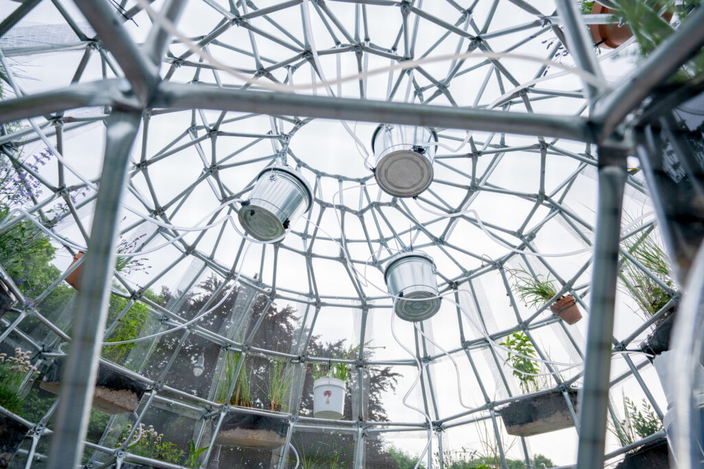 """An inside view of Mary Mattingly's sculpture showing the """"guts"""" inside the cage. The camera looks up to the ceiling where a network of metal bars criss-cross to support themselves. Three steel buckets hang from the ceiling with clear tubes running from them into tubs that are installed on the walls. The tubs are transluscent, revealing the rocks and soil that fill them and provide a home for green plants that are planted in them."""
